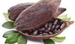 cocoa-00-pods
